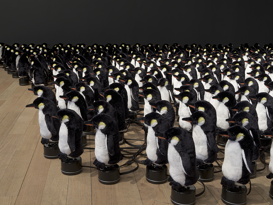 bitforms gallery » Penguins Mirror